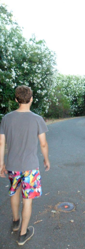 Tripp walking CA